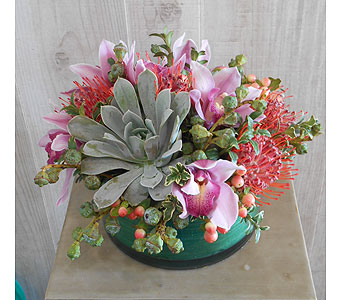 Funky in Dallas TX, Petals & Stems Florist