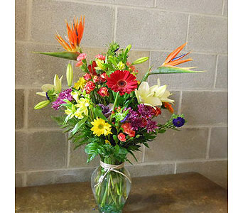 Celebrate Today in Mayfield Heights OH, Mayfield Floral
