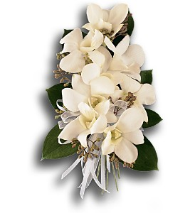 White Dendrobium Corsage in Scranton PA, McCarthy Flower Shop<br>of Scranton