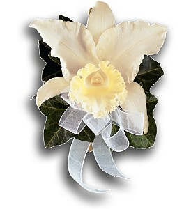 Japhet Orchid Corsage in Kingsville ON, New Designs