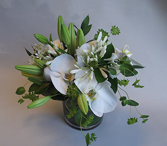 Just White 5 in Victoria BC, Fine Floral Designs
