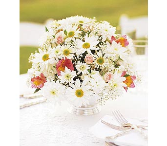 Daisy Joy Centerpiece in Hendersonville TN, Brown's Florist