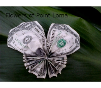 Butterfly Money in San Diego CA, Flowers Of Point Loma