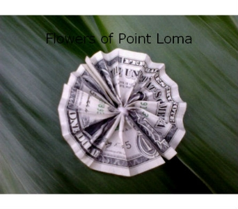 Round pleated money in San Diego CA, Flowers Of Point Loma
