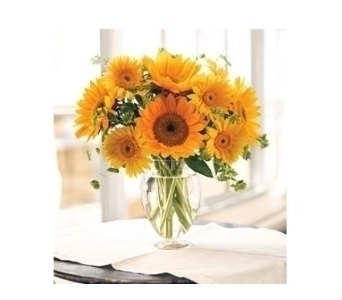 Sunflower Dreams in Charleston SC, Tiger Lily Florist Inc.