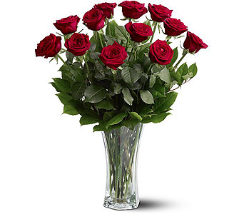 A Dozen Premium Red Roses in Rochester NY, Expressions Flowers & Gifts