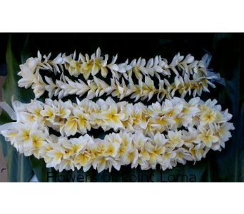 Plumerias Leis in San Diego CA, Flowers Of Point Loma