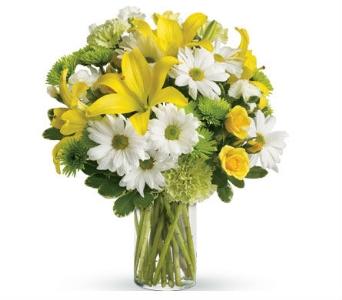 Florists Caloundra