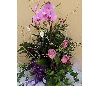 Planter with Orchid, Roses in Sunnyvale CA, Flowers By Sophia