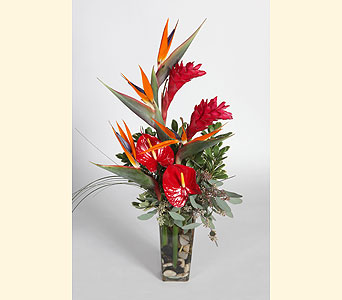 Tropical Vase Arrangement in Southampton PA, Domenic Graziano Flowers