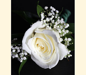 Boutonniere 1 Rose in Southampton PA, Domenic Graziano Flowers