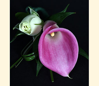 Boutonniere 1Mini Calla, 1Spray Rose in Southampton PA, Domenic Graziano Flowers
