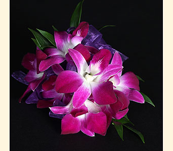 Corsage 7 Dendrobium Orchids in Southampton PA, Domenic Graziano Flowers
