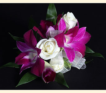 Corsage 3 Spray Rose, 5 Dendrobium Orchid in Southampton PA, Domenic Graziano Flowers