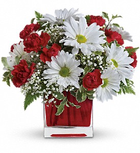 Red And White Delight by Teleflora in Redwood City CA, A Bed of Flowers