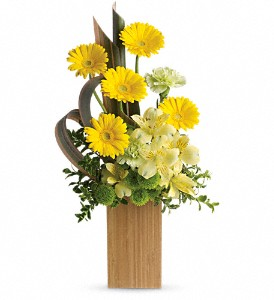 Sunbeams And Smiles by Teleflora in Fort Wayne IN, Flowers Of Canterbury, Inc.