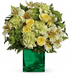 Teleflora's Emerald Elegance Bouquet in Redwood City CA, A Bed of Flowers