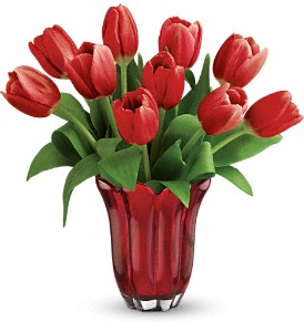 Teleflora's Kissed By Tulips Bouquet in Rock Island IL, Colman Florist