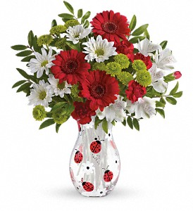 Teleflora's Lovely Ladybug Bouquet in Albany Area NY, A Touch of Country