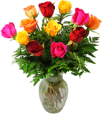DZ Multi Colored Roses in Newport News VA, Pollards Florist