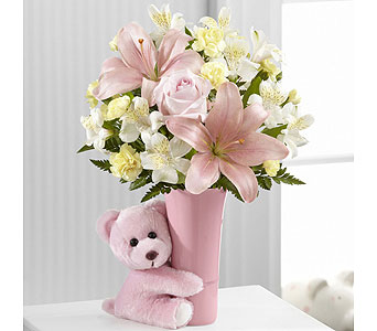 Baby Girl Big Hug Bouquet in Washington IN, Myers Flower Shop