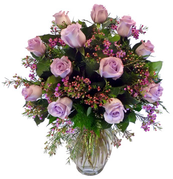 Violet Love Affair in Scranton PA, McCarthy Flower Shop<br>of Scranton