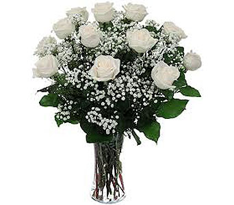 A Dozen White Roses in New Paltz NY, The Colonial Flower Shop