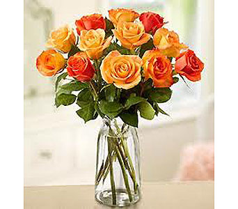 Dozen Orange Roses in New Paltz NY, The Colonial Flower Shop
