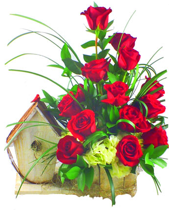 Tweet Love, in Red  in Scranton PA, McCarthy Flower Shop<br>of Scranton