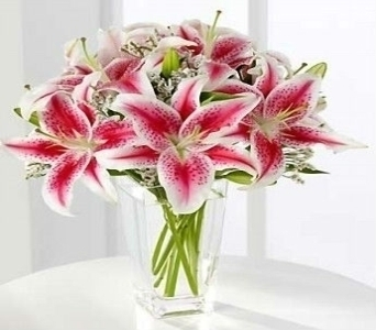 Large Lily Bouquet in Princeton, Plainsboro, & Trenton NJ, Monday Morning Flower and Balloon Co.