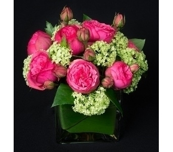NYC Garden Roses Path in New York NY, Starbright Floral Design