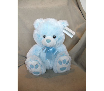 Baby Blue Bear Hug in Sun City AZ, Sun City Florists