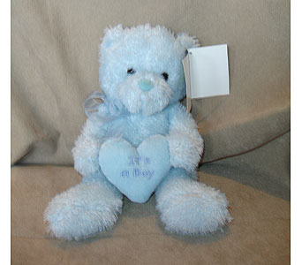 Baby Blue Bear in Sun City AZ, Sun City Florists
