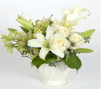 Pure Blooms in Silver Spring MD, Bell Flowers, Inc