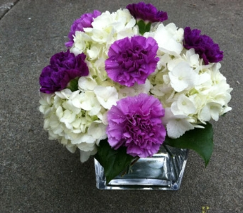 Purple and White Cube in Cooperstown NY, Mohican Flowers