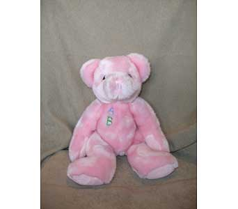 10� Baby Pink ABC Bear in Sun City AZ, Sun City Florists