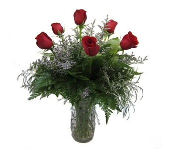 Half Dozen Red Roses in Lawrence KS, Owens Flower Shop Inc.