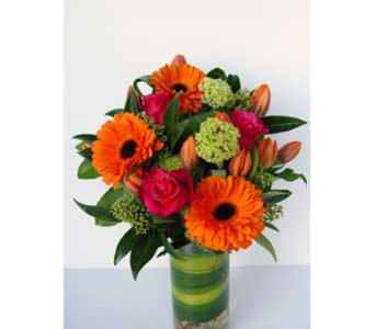 Funky Fresh in North Vancouver BC, Special Moments Flowers And Gifts
