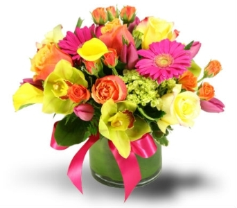 Hot Hot Orchids in Bellevue WA, Lawrence The Florist