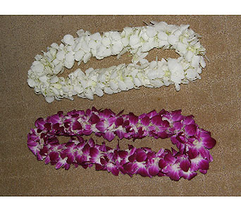 White double dendrobium orchid lei - fresh from Hawaii/ hand strung in Oakland CA, J. Miller Flowers and Gifts