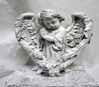 BOY ANGEL WITH WINGS in Pittsburgh PA, Harolds Flower Shop