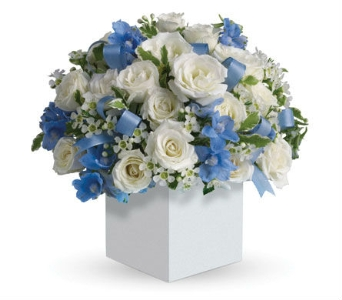 New Baby Gifts in flower-deliveryNew Zealand, Petals