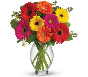 Birthday Flowers in flower-deliveryNew Zealand, Petals