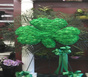 SHAMROCK in New Rochelle NY, Enchanted Flower Boutique