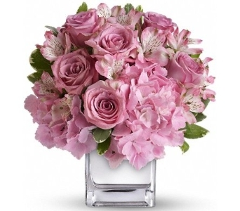 Be Sweet Bouquet in Norristown PA, Plaza Flowers