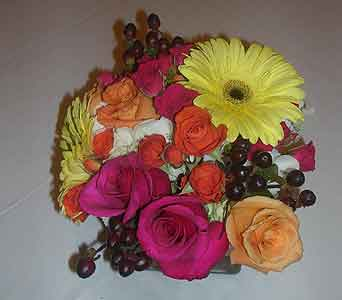 Party in Dallas TX, Petals & Stems Florist