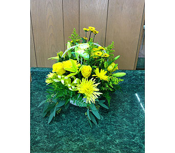 Butterfly Beauty Basket in Dorchester MA, Lopez The Florist