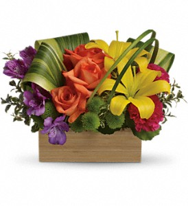 Teleflora's Shades Of Brilliance Bouquet in Santa Claus IN, Evergreen Flowers & Decor