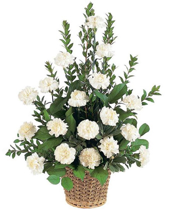 White Carnation Sympathy Basket in Denver CO, Lehrer's Flowers