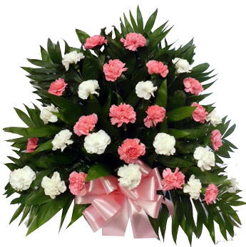 32 Carnation Tribute Mache: Pink and White in Scranton PA, McCarthy Flower Shop<br>of Scranton